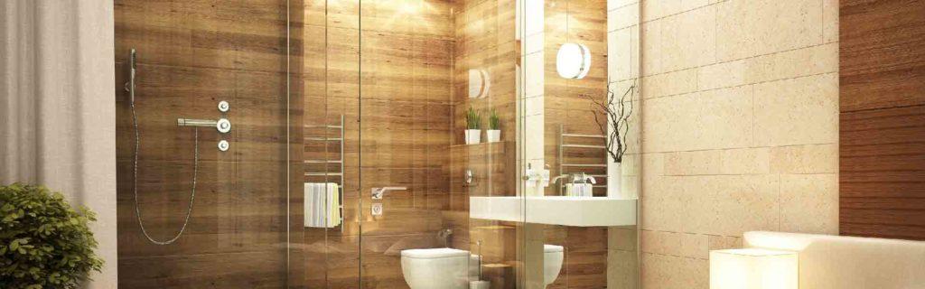 Frameless Glass Shower Doors Improve Any Bathroom